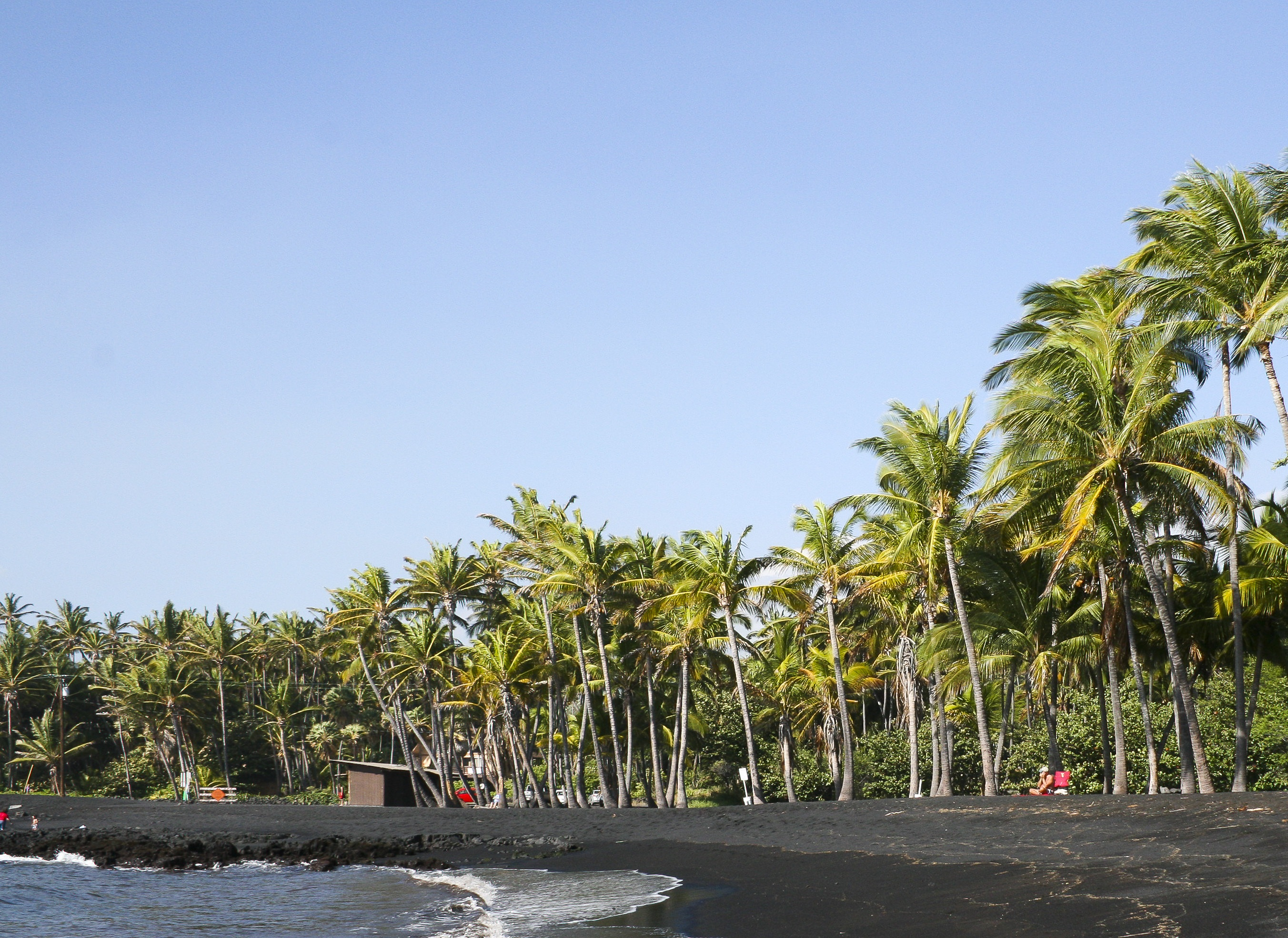 Punaluu_Black_Sand_Beach,_Hawaii,_USA8