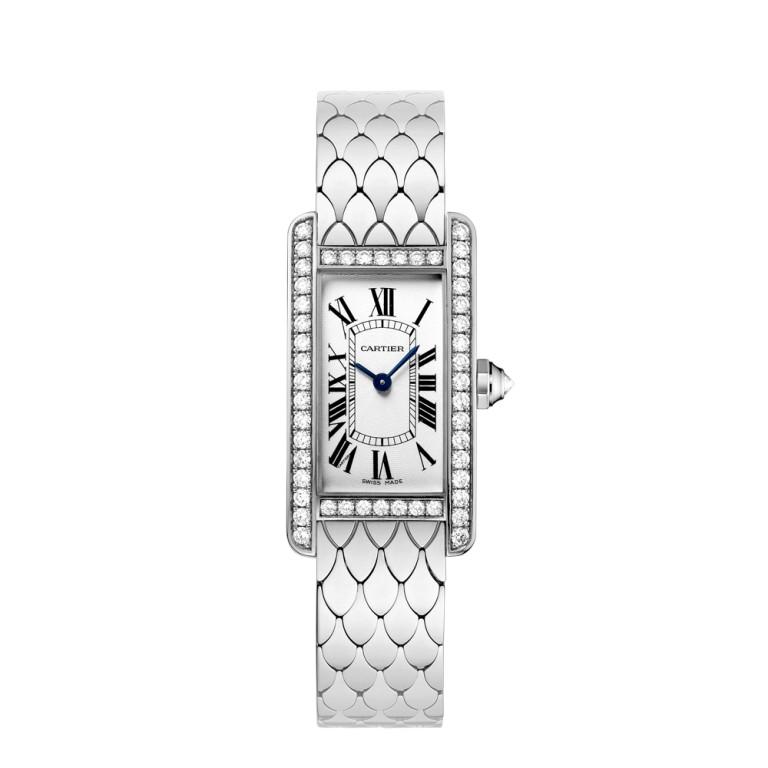 luxury watch (1)