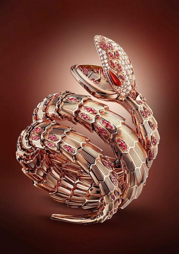 luxury watch (3)