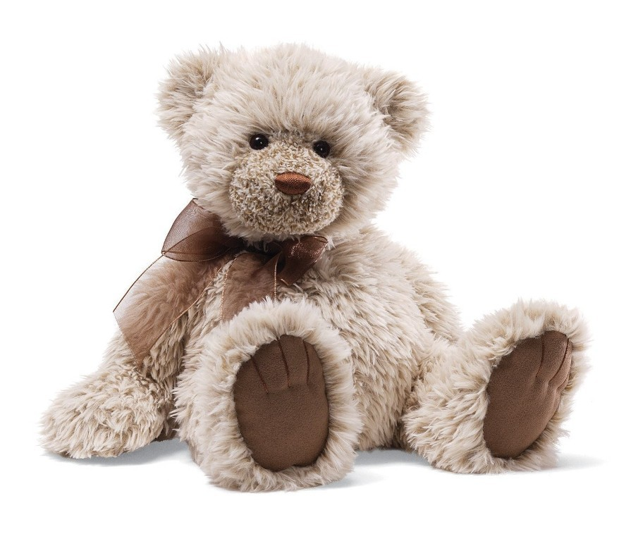 teddy bear (1)