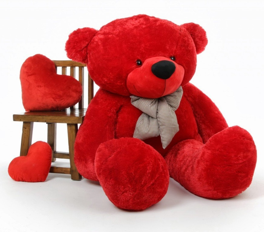 teddy bear (2)