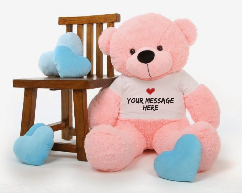 teddy bear (5)