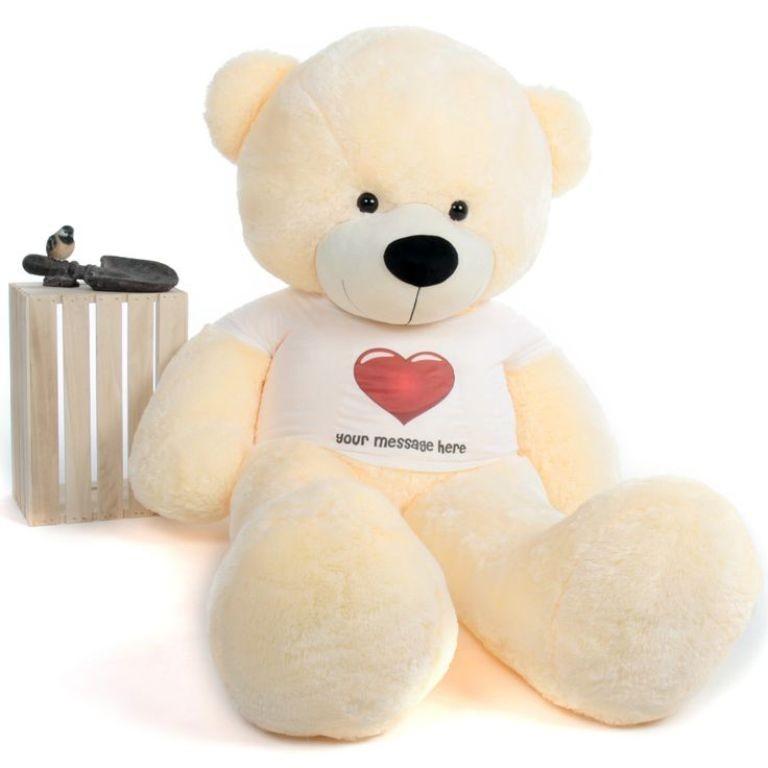 teddy bear (6)
