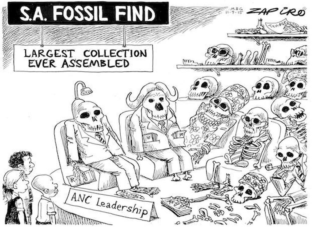 Zapiro (11)