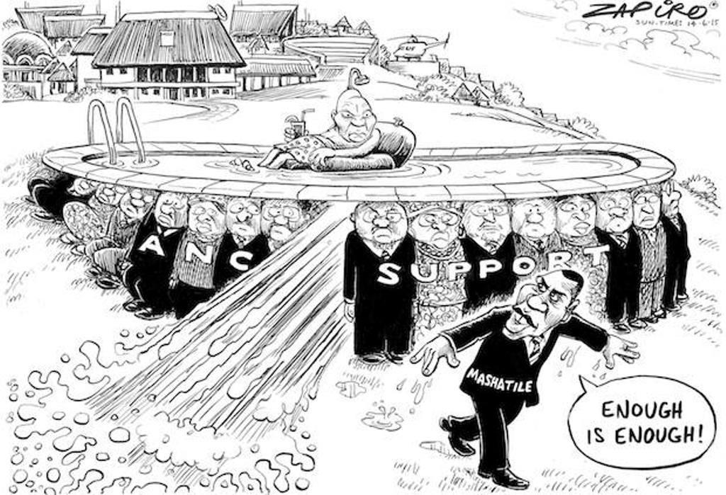 Zapiro (12)