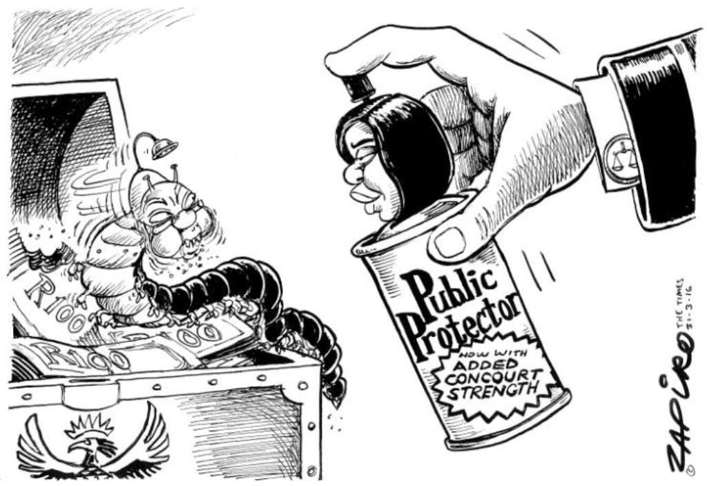 Zapiro (5)