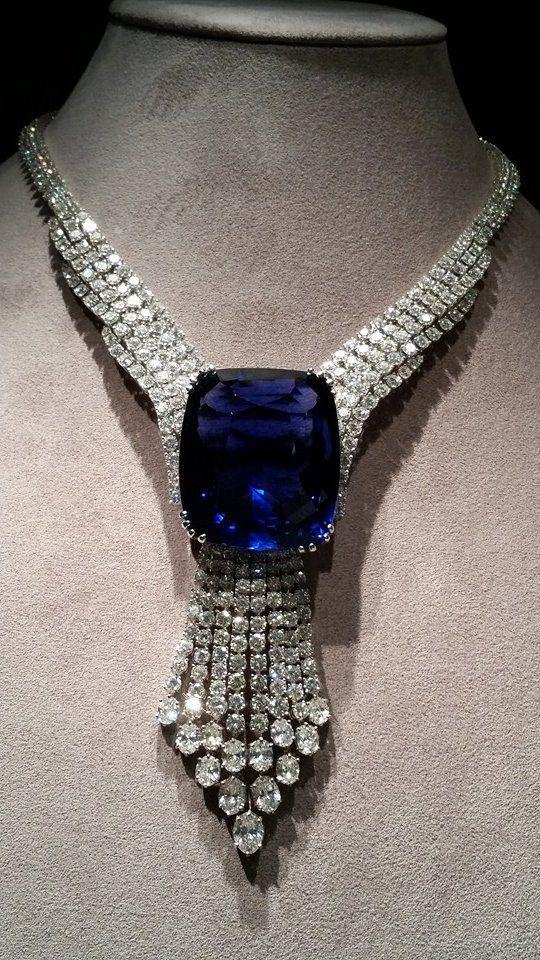 blue-belle-of-asia-2