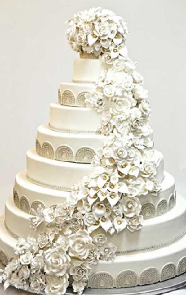 Birthday Cake Celebrity