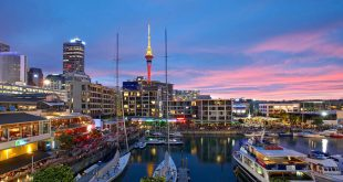 Top 10 Must-Visit Places in New Zealand