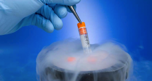 Top 10 Facts You Didn't Know About Cryopreservation