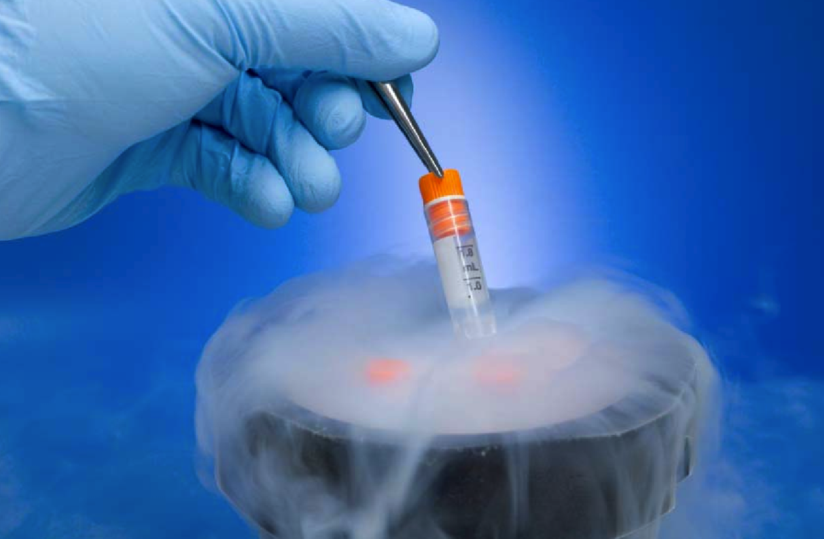 Photo of Top 10 Facts You Didn't Know About Cryopreservation