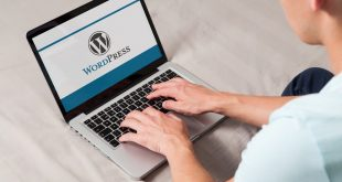 Top 10 Reasons behind WordPress HTTP Errors