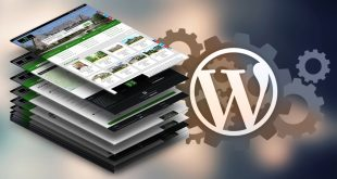 Top Tips for Creating Killer WordPress Content