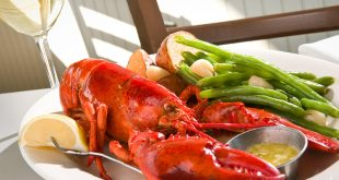 Top Seafood Kitchens in America