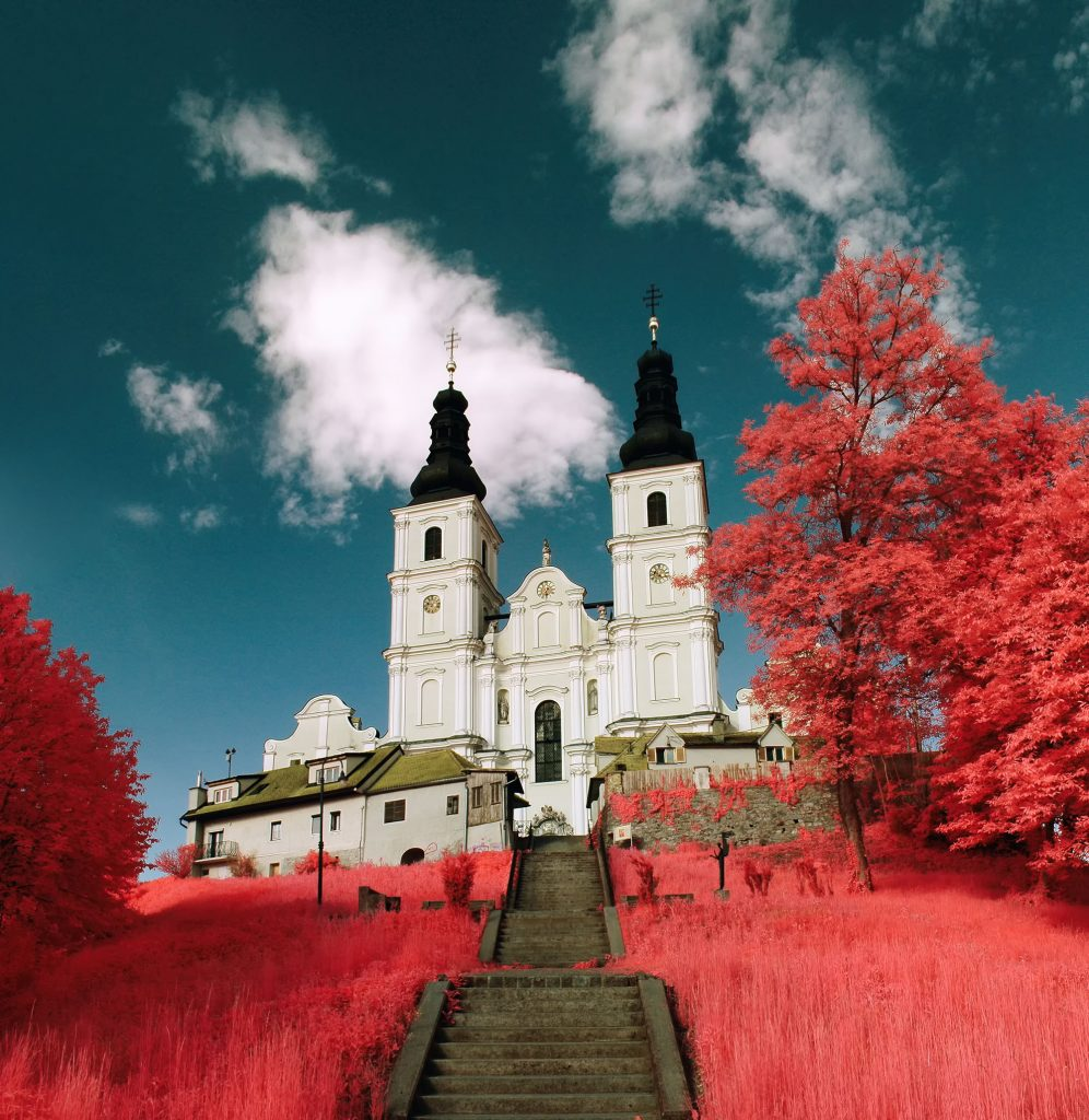 Photo of Top 10 Best Infrared Photographers in The World