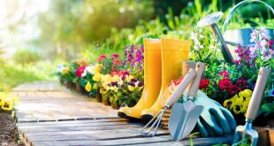 The Top 10 Things Gardeners Need to Know