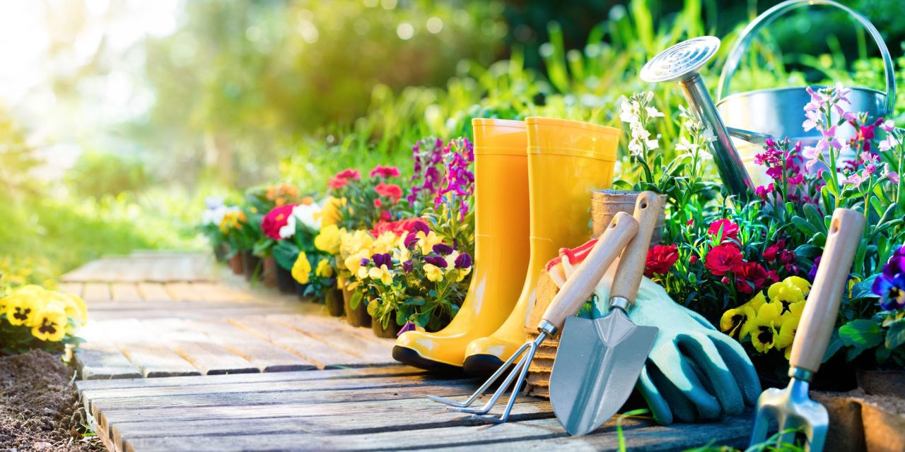 Photo of The Top 10 Things Gardeners Need to Know