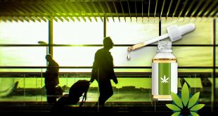 Is CBD Oil Travel-Friendly?