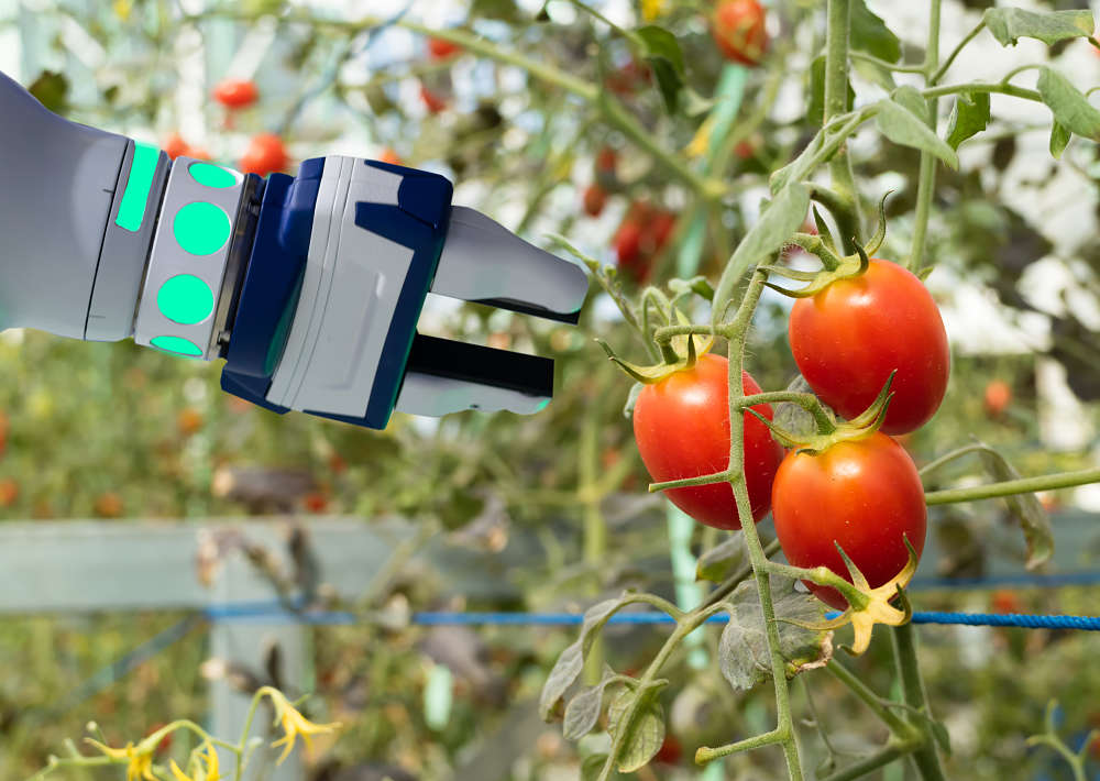 Photo of Leveraging Artificial Intelligence to Control Agriculture Robotics