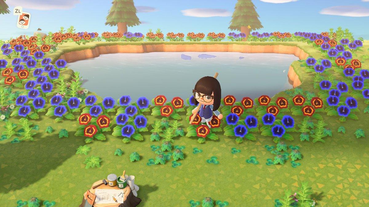 Rare Flower Island